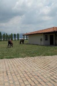 foro-appio-hotel-mansio (1)